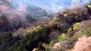 Magna Canta - Hymn (HD video)
