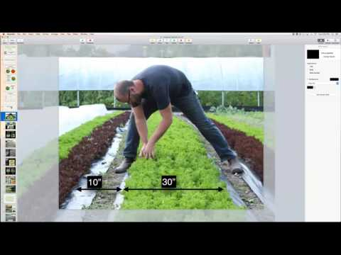 Curtis Stone: Intensive Production Systems for Urban Farms