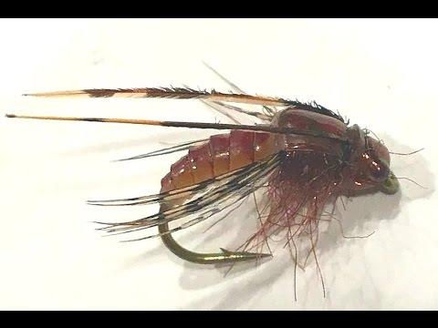 Tying a Latex Caddis Pupa - Tradd's Flies