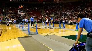 Seattle Flydogs Flyball Club, Seattle Storm Basketball Performance