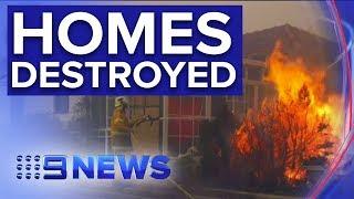 Bushfire destroy at least three homes in northern NSW | Nine News Australia