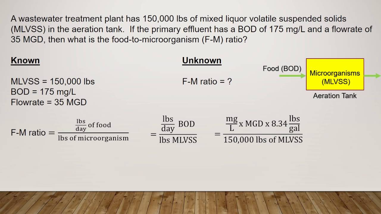 HOW TO CALCULATE FOOD-TO-MICROORGANISM RATIO | F-M RATIO