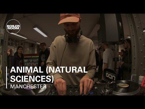 Animal (Natural Sciences) Boiler Room Manchester DJ Set