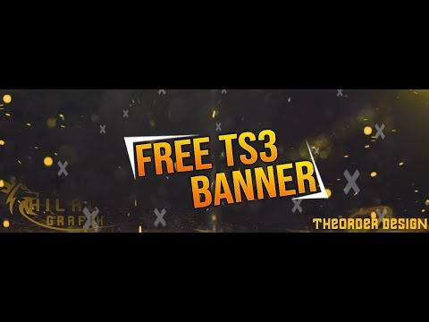 theorder-l-ts3-system-banner-free