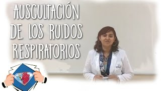 Auscultación de Ruidos Respiratorios - Medical League
