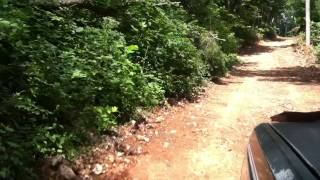 East Tennessee Land For Sale - New driveway to Rebel Farms Tract 1