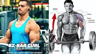 ARMS & ABS WORKOUT Exercises