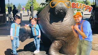 Blippi was here at the Zoo | Learn Animals for Children