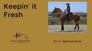 Preview of Opening Doors (Develop a Calm and Trusting Horse)