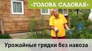 Голова садовая - Урожайные грядки без навоза