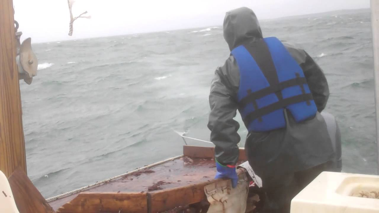 Bay scallop fishing in falmouth ma 1 11 2014 youtube for Fishing license ma
