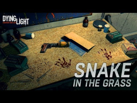 Content Drop #6: Snake in the Grass
