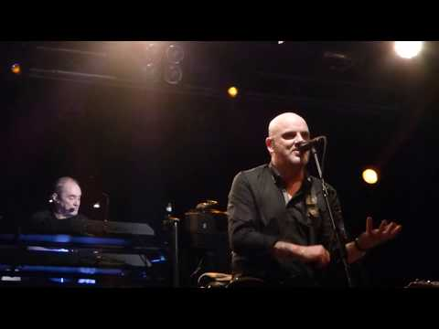 The Stranglers - Golden Brown - Liverpool 2018