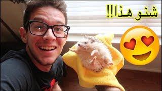 اشترينا حيوان اليف كيوت لدرجة مو طبيعية - اول يوم بامريكا !!