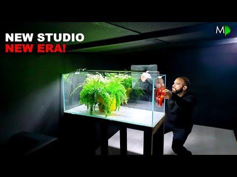 NEW STUDIO: FIRST AQUARIUM IN!! | MD FISH TANKS