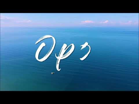 OPOL BEACH AERIAL VIEW