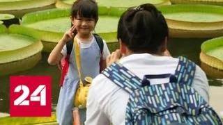 Тайвань в тестовом режиме отменил визы для россиян - Россия 24