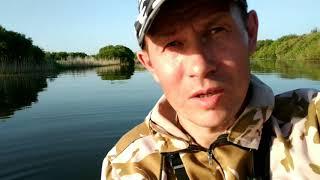 Рыбалка с НОЧЕВКОЙ Ловля ОКУНЯ на СПИНИНГ Рыбалка на ОЗЕРЕ