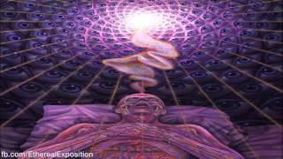Terewnce MCkenna (Rimshots) 015 - Die With Understanding
