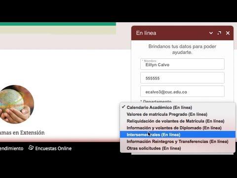 Chat En Línea De La Pagina Web