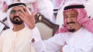تفاعلكم : صور ملكية بعدسة المصور السعودي بندر الجلعود