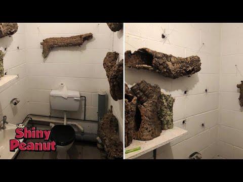 Ketika Kebelet Pipis Tapi Dapet Toilet Macem Begini? Apa yang Bakal Kamu Lakuin
