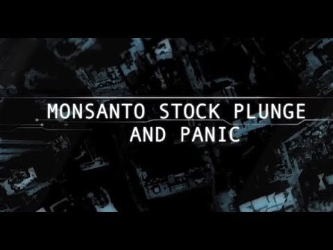 Operation Monsanto Stock Plunge   official video