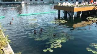 Отдых на озере Хевиз