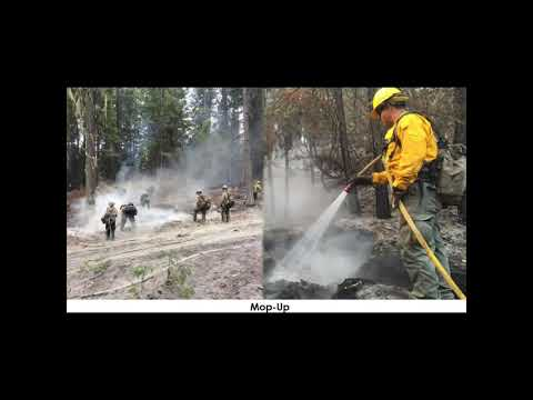Smoke Exposure Health Effects And Mitigations For Wildland Fire Personnel