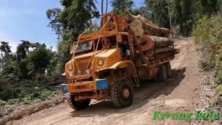 Extreme Logging Road | 6×6 Nissan V8 Timber Truck