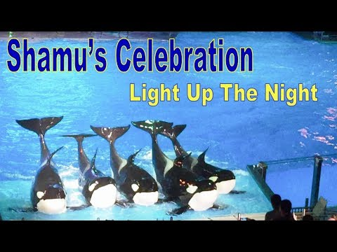Sea World Orlando - Light Up the Night Shamu's Celebration  | Full Show July 2017