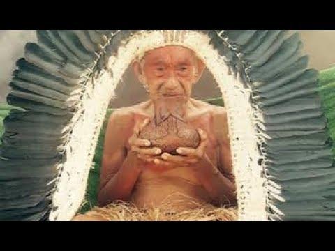 Ninawá Pai da Mata - Pajézinhos da Floresta Encantada