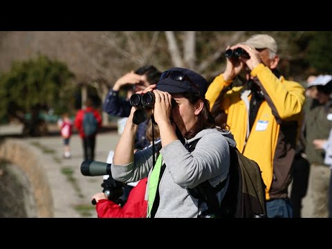 Citizen Science | California Academy of Sciences - YouTube