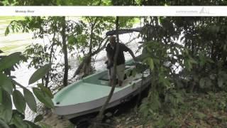 Monkey River Tour in southern Belize - Paulinchen Worldwide