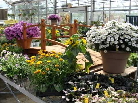 Fall Displays & Offerings at Hillermann Nursery & Florist