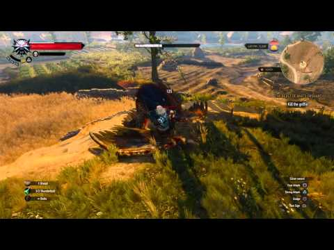 The Witcher 3: Wild Hunt_20150522215504