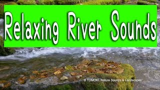 Relaxing River Sounds for Sleep, Healing, Meditation, Study, Work