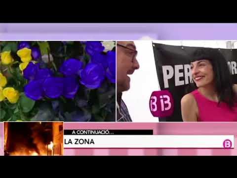 IB3 entrevista a Roser Amills Sant Jordi 2018
