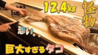 【MUKBANG】Eating 12.4kg of Giant Pacific Octopus ~It's Huge, Scary, & Deliciou~