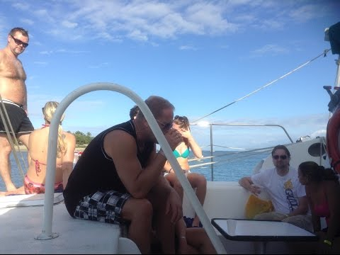 Caribbean Sea Watching fishes