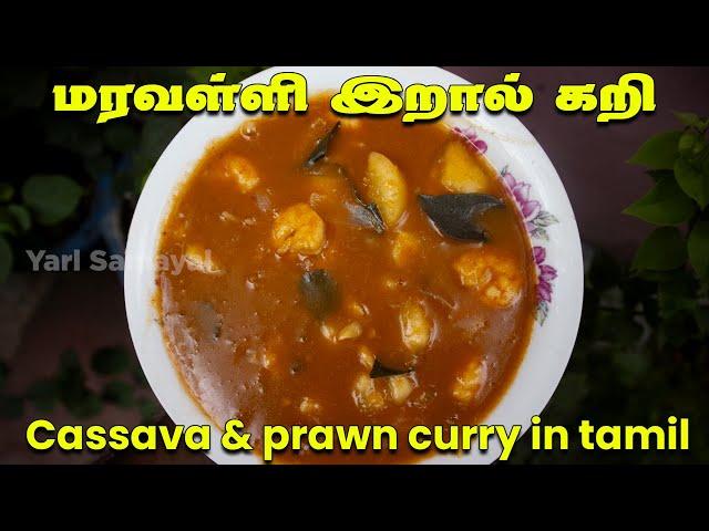 மரவள்ளி கிழங்க இப்பிடி ஒருக்கா செய்யுங்க, சட்டில மிஞ்சாது   Cassava & prawn curry in tamil