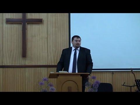 Два погледа върху тържественото влизане на Христос в Йерусалим