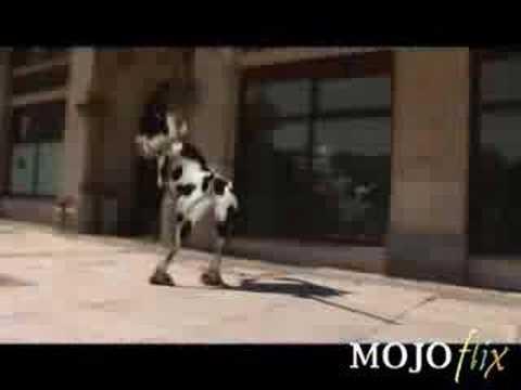 La vaca MU MU