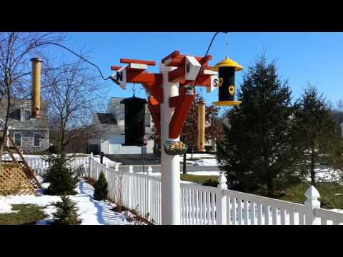 PVC Bird Feeder Pole