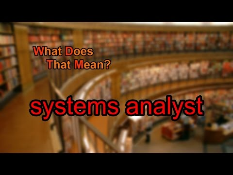 What does systems analyst mean?