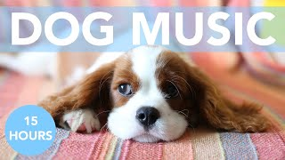 Music for Dogs! Soothing Songs for Dog Anxiety, Depression and Hyperactivity!