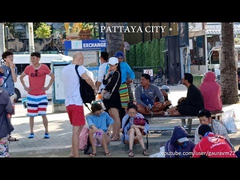 Lovely Coral Island pattaya city A short trip