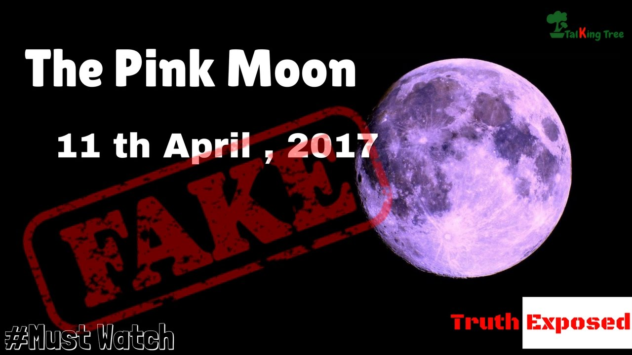 Pink Moon 2017 Totally Fake Truth Exposed Youtube