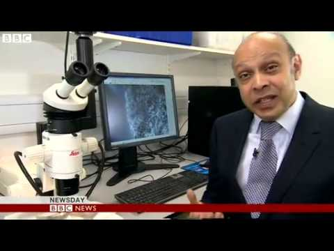 BBC News   Trace of another world found on the Moon