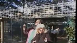 Лучший Сборник Смешные Животные Смешное Видео